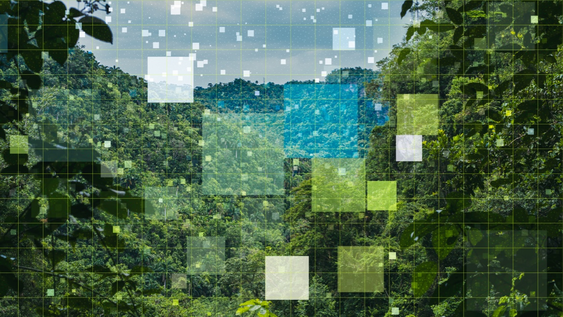 Environment image
